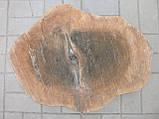 Слеб горіха, фото 2