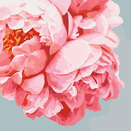 """Картина по номерам. Букеты """"Розовые пионы""""  40*40см, фото 2"""