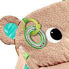 Детский Игровой коврик Мишка США  Bright Starts Tummy Time Prop & Play, фото 7