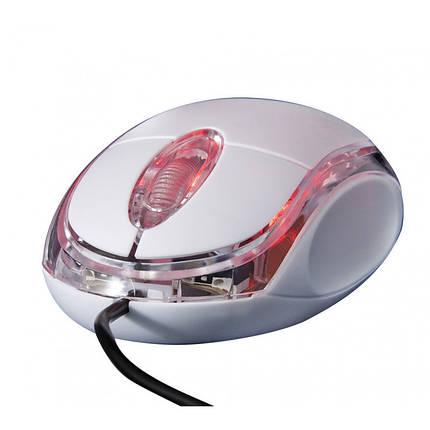 Мышь проводная Frime FM-001W USB (800dpi) White, фото 2
