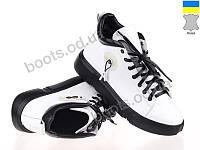 """Ботинки  женские """"Allshoes"""" #153453. р-р 36-40. Цвет белый. Оптом"""