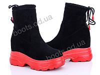 """Ботинки  женские """"Diana"""" #Ботинки 2031 красный. р-р 36-39. Цвет черный. Оптом"""
