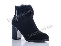 """Ботинки  женские """"Gallop Lin"""" #WL136. р-р 36-41. Цвет черный. Оптом"""
