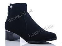 """Ботинки  женские """"Gallop Lin"""" #GL227. р-р 36-41. Цвет черный. Оптом"""