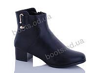 """Ботинки  женские """"Gallop Lin"""" #E181. р-р 36-41. Цвет черный. Оптом"""
