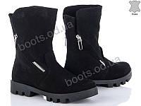 """Ботинки  женские """"G&M"""" #1049 ЗАМША ny. р-р 36-41. Цвет черный. Оптом"""