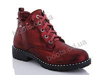"""Ботинки  женские """"Gollmony"""" #F22. р-р 36-41. Цвет бордовый. Оптом"""