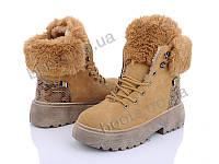 """Ботинки  женские """"Ideal"""" #K1316. р-р 36-41. Цвет camel. Оптом"""