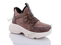 """Ботинки  женские """"Jin Lan"""" #A71-11. р-р 36-40. Цвет коричневый. Оптом"""
