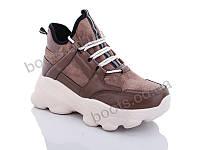 """Ботинки  женские """"Jin Lan"""" #A71-33. р-р 36-40. Цвет коричневый. Оптом"""