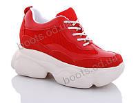 """Кроссовки  женские """"Jin Lan"""" #B56-12. р-р 36-40. Цвет красный. Оптом"""