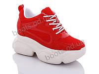 """Кроссовки  женские """"Jin Lan"""" #B56-18. р-р 36-40. Цвет красный. Оптом"""