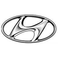 Защиты картера двигателя и кпп Hyundai (Хюндай) Полигон-Авто, Кольчуга, фото 1