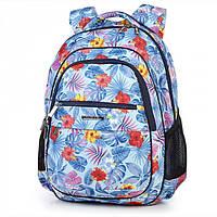Рюкзак школьный ранец ортопедический Dollyl 543 Голубой ( DL - 543)