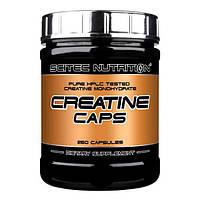 Scitec Nutrition Creatine- 250caps