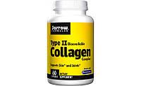 Jarrow Formulas Type 2 Collagen 60 caps, Здоровье связок и суставов, улучшение состояния кожи, ногтей и волос