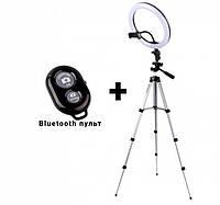 Набор блогера 2 в 1 кольцевая LED селфи лампа 26 см 16W 3 режима свечения с держателем для телефона и штатив 2 м + bluetooth пульт