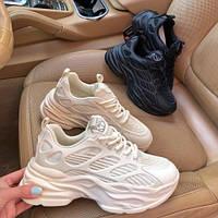 Бежевые кроссовки с полосками Amafira, фото 1