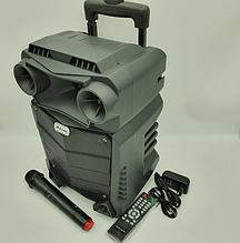 Динамік акумуляторний UF-Q8F-DT