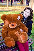 Коричневый бурый мишка Тедди красивый плюшевый медведь