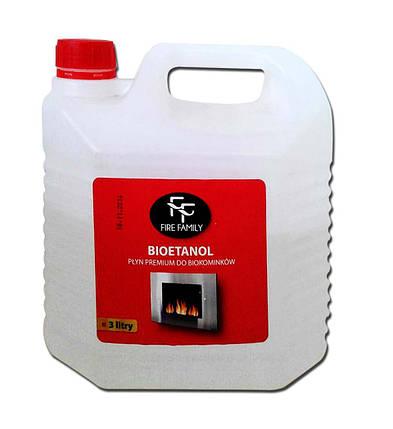 Биотопливо (топливо для биокаминов) 3л, фото 2
