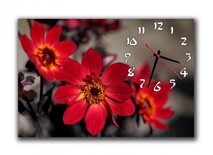 Часы настенные 30х45см Z 257