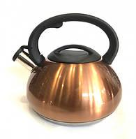 Чайник из нержавеющей стали со свистком Benson BN-713 3 л Gold