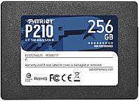 PATRIOT P210 256 GB (P210S256G25), фото 1