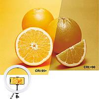 """Кольцевая LED-лампа Puluz PKT3050EU 12"""" + штатив 1.1 м (PKT3050EU), фото 7"""
