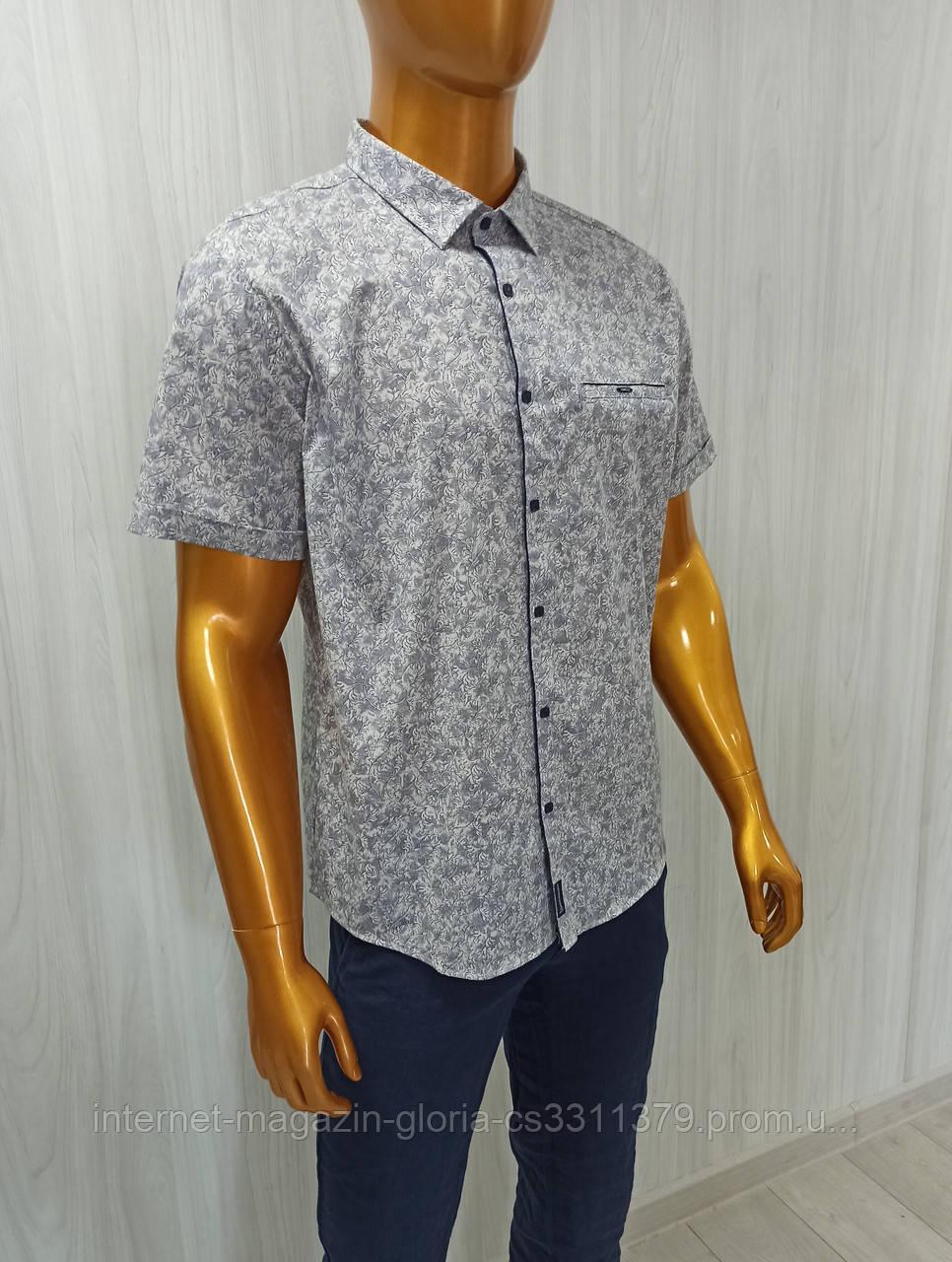 Мужская рубашка Amato. AG29836. Размеры: 2XL,3XL,4XL,5XL.