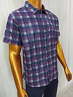Мужская рубашка Amato. AG  29585. Размеры: 2XL,3XL,4XL,5XL., фото 1