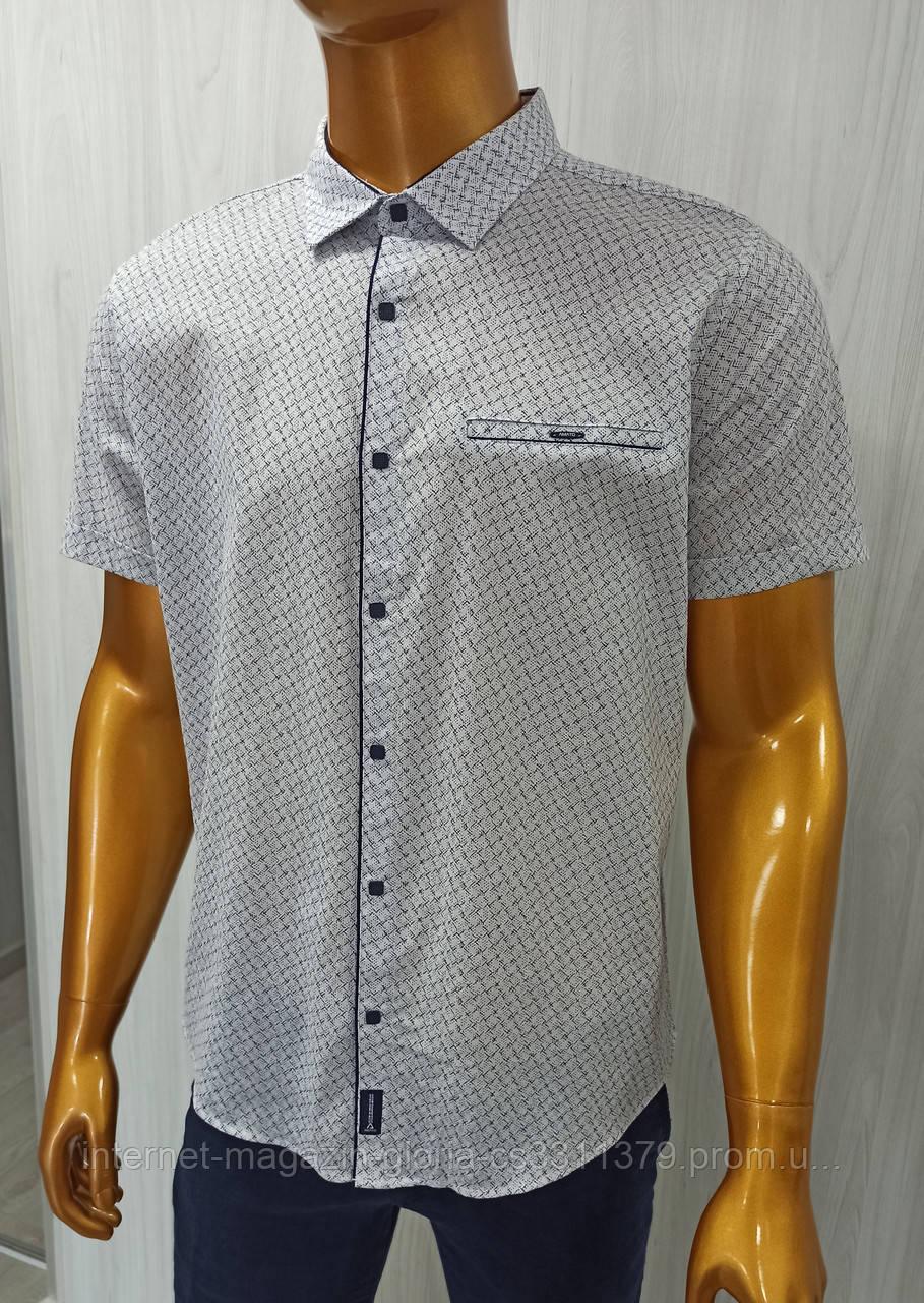Мужская рубашка Amato. AG  29838. Батал.Размеры: 2XL,3XL,4XL,5XL.