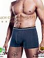 Труси чоловічі боксери  Wezege 8061. Набір з 2 штук в розмірі 3XL, фото 2