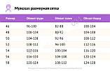 Мужской летний спортивный костюм футболка и шорты размеры: 46, 48, 50, 52, 54, фото 10