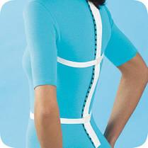 Массажер для спины и хребта Космодиск Kosmodisk Spine Massage, фото 3