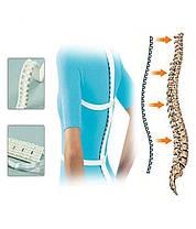 Массажер для спины и хребта Космодиск Kosmodisk Spine Massage, фото 2