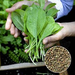 Насіння шпинату для пророщування 100 г