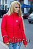 Куртка осенняя, шанель в пяти различных расцветках 9021