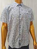 Мужская рубашка Батал Amato. AG.KG 29839-v06. Размеры: 2XL,3L,4XL,5XL., фото 5