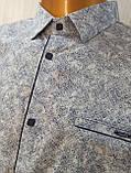 Мужская рубашка Батал Amato. AG.KG 29839-v06. Размеры: 2XL,3L,4XL,5XL., фото 6