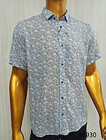 Мужская рубашка FLP. mod.46930-голубая. Размеры: M,L,XL,XXL., фото 1