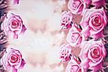 """Комплект постельного белья из ранфорса ТМ """"Ловец снов"""", Розовые розы, фото 2"""