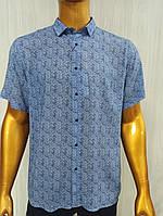 Мужская рубашка FLP. mod.46920. Размеры: M,L,XL,XXL., фото 1