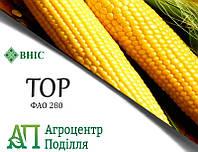 Семена кукурузы ТОР (ФАО 280) ВНИС (бесплатная доставка) 2021 г.