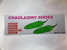 Электросушилка сушилка для обуви Chaolaidry shoes CL-603 ( Копия ), фото 3