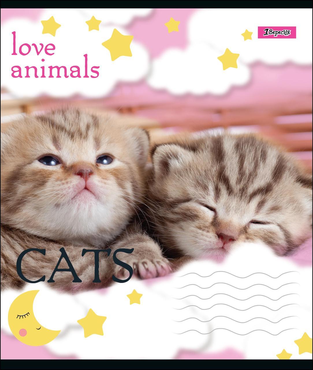 Тетрадь А5/12 лин. 1В LOVE ANIMALS, 25 шт/уп.