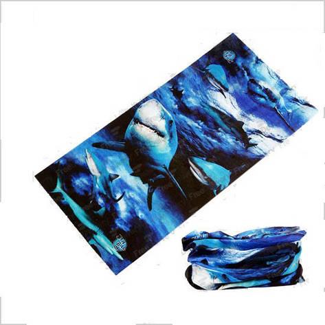 Бафф бандана-трансформер, шарф из микрофибры, акулы, фото 2
