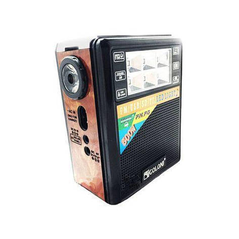 Портативная колонка радио караоке MP3 USB Golon RX-199 c Led фонариком, фото 2