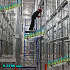 Платформова драбина Н4500 мм, складська драбина з перилами, фото 7