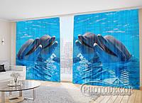 """Фото Шторы """"Два дельфина 1"""""""